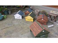 Honeybee swarm cottage & free beekeeping course