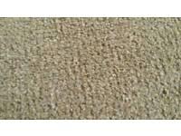 """Carpet 11ft 6"""" x 10ft"""