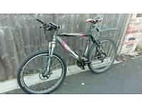 Men's Mountain Bike £350