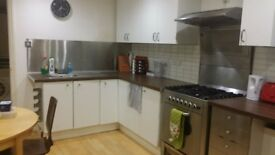 Double Room - for student or professional in spacious uncrowded flat