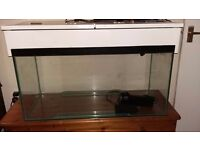 3ft x 2ft tropical/cold water fish tank £80