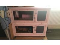 2 rabbits with outdoor hutch