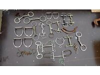 A job lot of horse bits and stirrups. Snaffle, Pelham, Anti rearing, Chifney, Eggbutt, Kimberwick
