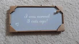 I was normal 3 cats ago sign