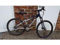 """Giant """"Rock"""" Ladies Mountain Bike, XS frame"""