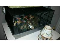 Choc&White Hamster with cage!