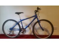 "Raleigh Manta Ray Boy's Mountain Bike 15"" Aluminium Frame"