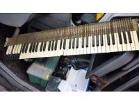 Hammond Organ Keys