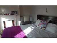 Amazing double room to rent end of September (just for a month)