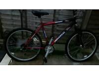 18 speed mountain bike cheap