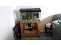 Used 78l Fishtank, Stand and Tropical Accessories
