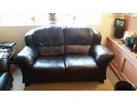 Two Seater Dark Brown Leather Sofa