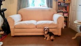 Shabby Chic Sofa (Unmoveable Dog Not Included)