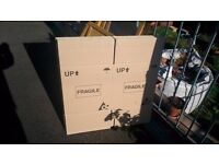 10 cardboard boxes 43cm H x 40cm W Double skinned used but excellent condition