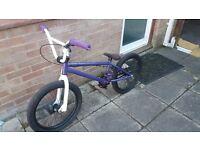 Custom made BMX