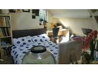 Double Student Room