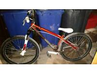 2009 Specialized P1 jump bike