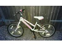 Child's mountain bike (age 6 - 9) just been serviced