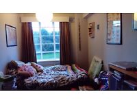 Unfurnished double room available in spacious 4 bedroom 1st floor flat in Hove