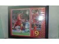 Large Framed signed torres liverpool picture