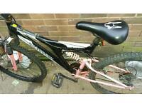 Silverfox unisex suspension bike