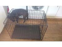 Small single door dog cage