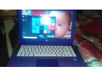 Purple hp 14 inch laptop in really good condition