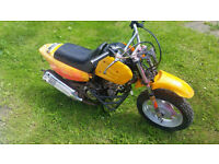 Kids 50cc Motorbike, Spares or repairs (project)