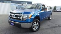 2013 Ford F-150 XLT | 5.0 V8 | Crew | Local Trade In