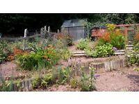 j davies gardening services