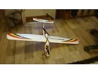 Mini Skywalker rc airplane