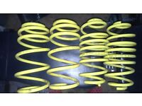 Astra lowering springs apex