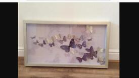 3D next butterfly picture