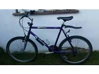 Apollo prodigy Mountain bike