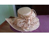 ladies mother of the bride/groom hat