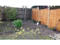 Garden maintenance Jones & Sons £20 an hour Bournemouth Poole Verwood Ringwood
