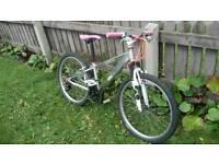 Custom aluminium girls bike
