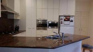 Kitchen - high quality with granite bench Cronulla Sutherland Area Preview