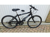 Boys Raleigh bike (idealy from 8 years plus). £25
