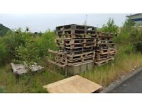 pallets suitable for Firewood