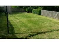 Grass hedges tree cutting garden maintenance moss park Cardonald hillington ralston
