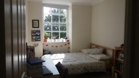 Double room available 1st Nov. in lovely two bed Montpelier flat share