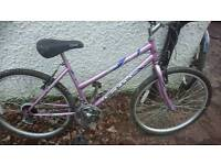 Exodus ladies mountain bike,18 inch frame,26 inch wheeld. 18 gears,good tyres,good condition