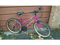 Pink ladies bike