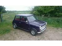Classic mini 1971 mk3 purple