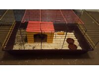 2 guinnipigs free to a good home , comes with cage good bedding and treats.