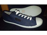 Firetrap Mens Canvas Trainers / Shoes - Blue & White