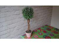 Topiary Tree decorative ornament