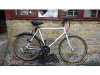robust mountain bike