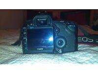 Canon 5D mark II (5D mark 2)